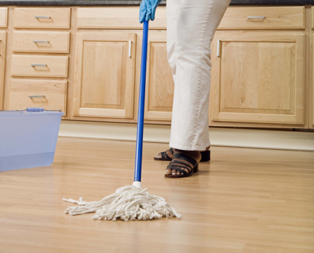 Cleaning Up After Critters Mice Amp Another Annoying