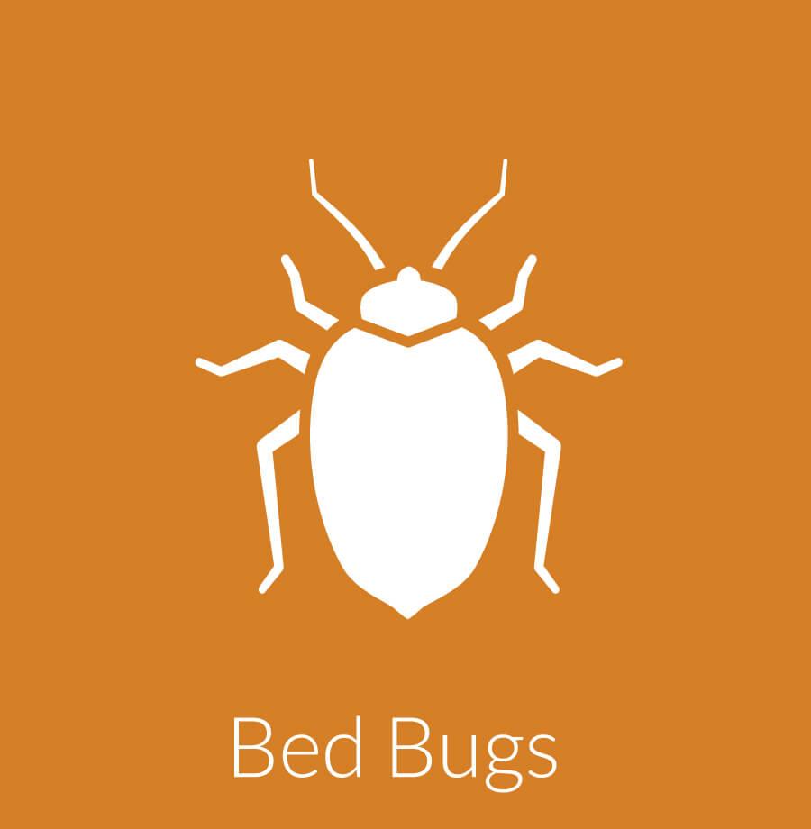 Bed Bug Exterminator Free Estimate